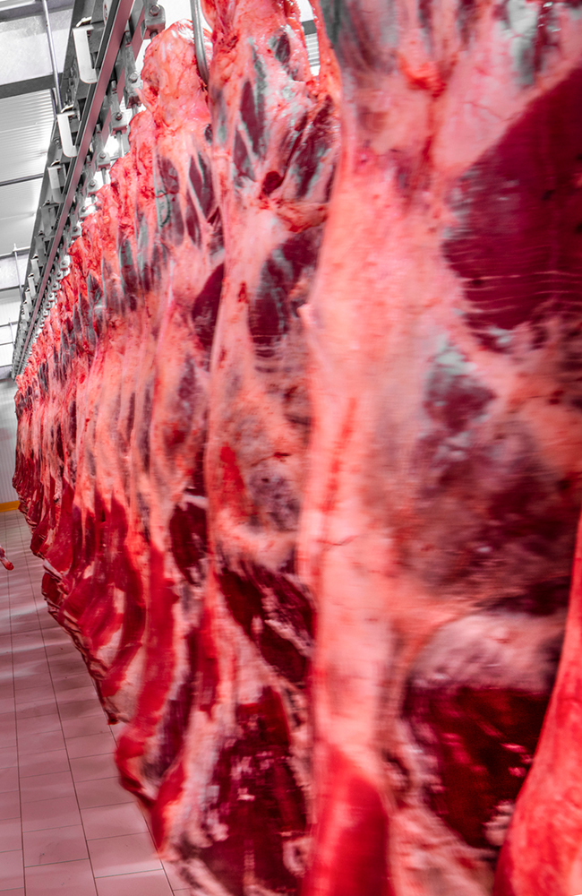 Meat_Plant_adj